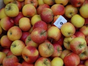 日本のりんごよりも、酸味がしっかりとしているフランスのりんご。ころんと手に収まるサイズを、歩きながらかじるのもまたよし!!